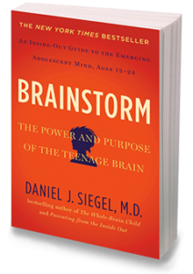 Online Companion Course for Brainstorm