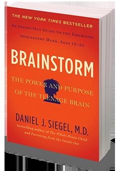 Online Companion Course for Brainstorm